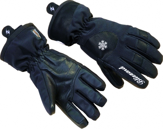 Blizzard Life style ski gloves ladies 5